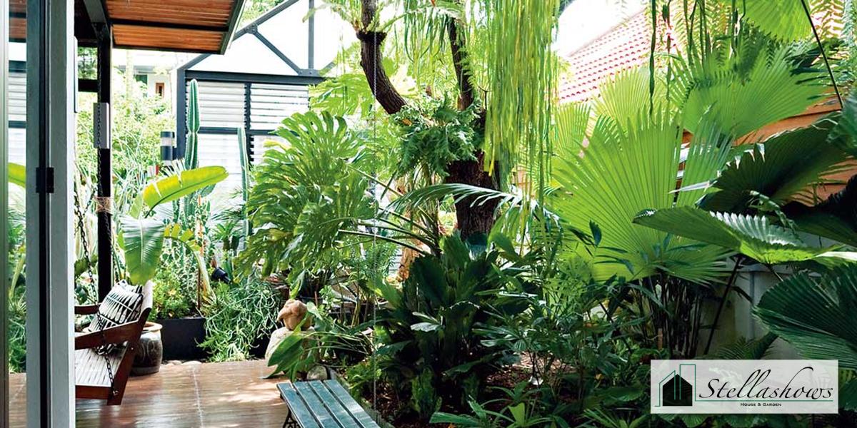 จัดสวนหย่อมอย่างไรให้ปลอดยุง และแมลงอาศัย