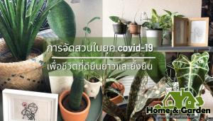 การจัดสวนในยุค covid-19 เพื่อชีวิตที่ดียืนยาวและยั่งยืน ผู้ที่ใช้ชีวิตในบ้านมีเวลาว่างมากในการจัดบ้านจัดสวน วันนี้เรามีแนวทางใน การจัดสวน