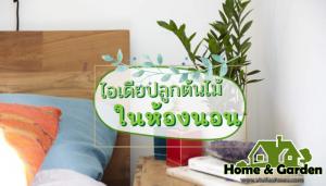 ไอเดียปลูกต้นไม้ในห้องนอน  ห้องนอน คือห้องสำหรับใช้พักผ่อนนอนหลับจริงๆ เป็นพื้นที่ส่วนตัวที่สุดในบ้าน ถึงแม้จะเป็นห้องนอน แต่เราก็สามารถ